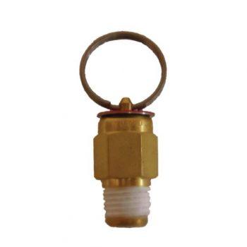 25 psi pressure release valve